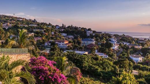 ما هي عاصمة جامايكا ؟