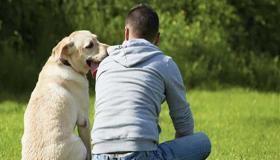 قصص وعبر قصيرة للصغار الكلب الوفي