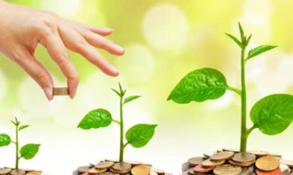 كيفية تمويل المشروعات الصغيرة