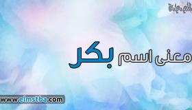 معنى اسم بكر Bakr في اللغة العربية وصفات حامل اسم بكر