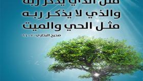 فوائد الذكر – ذكر الله