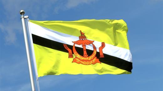 ما معنى ألوان علم بروناي؟