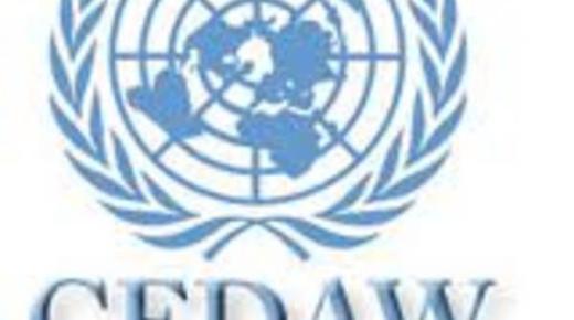 اتفاقية سيداو للقضاء علي التمييز ضد المرأة
