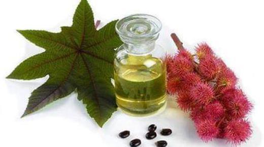 استخدامات زيت الخروع المذهلة للبشرة والشعر