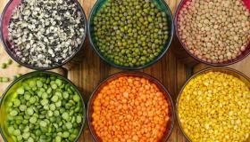 دراسة جدوى مشروع تجارة الحبوب