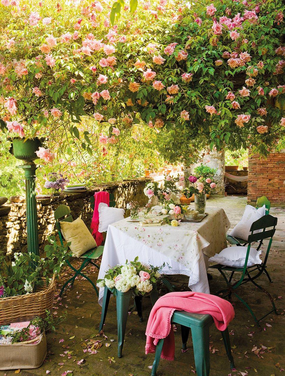 Un jardn lleno de rosas