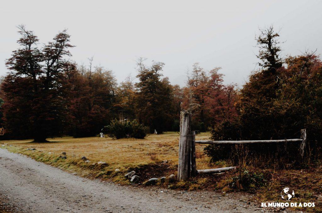 En camino al Cerro Tronador. Bariloche en otoño