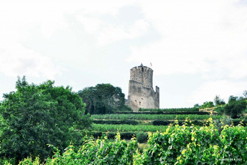 El castillo de Kaysersberg. Kaysersberg Francia