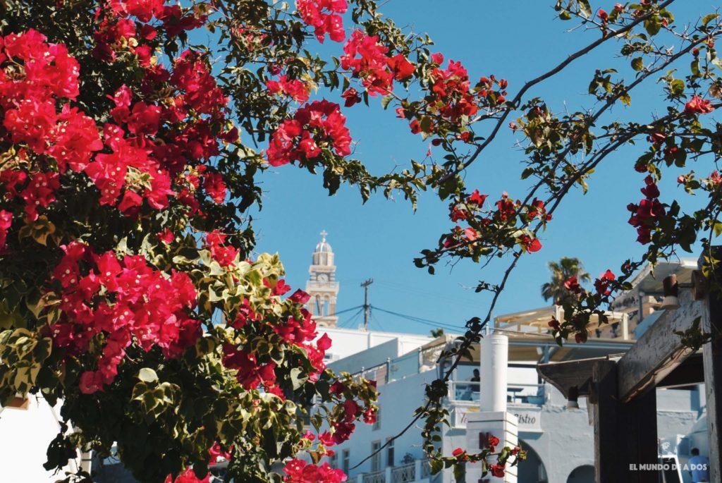 Santa Rita en los techos. Que ver en Santorini en 3 días