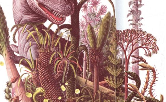 Plantas de tiempos pasados