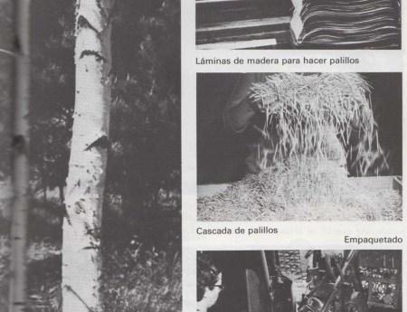 Árboles para hacer palillos