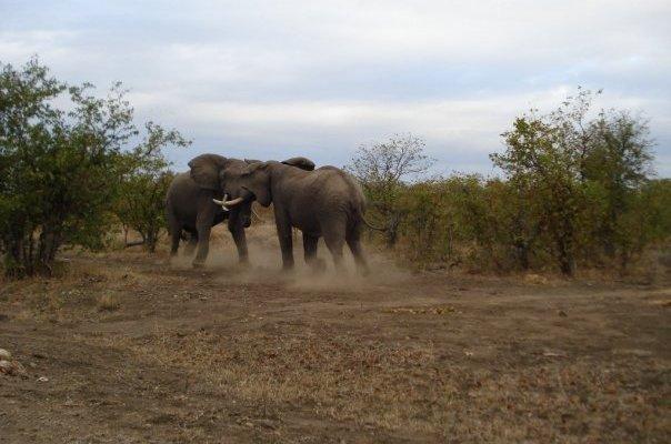 Sudáfrica por libre: Road & Rock Trip. Un viaje de escalada y naturaleza
