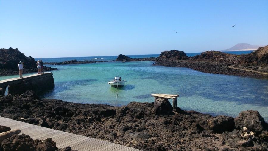 Playas del este y norte de Fuerteventura - Lobos