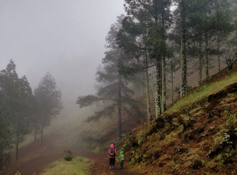 Senderismo con niños en Gran Canaria: 10 rutas de iniciación.
