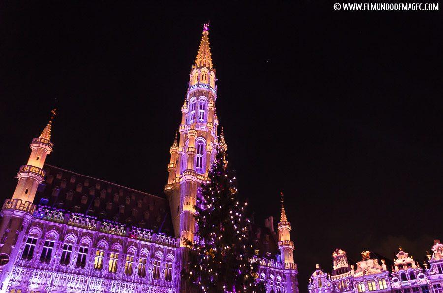 Que ver en Bruselas - La Gran Place
