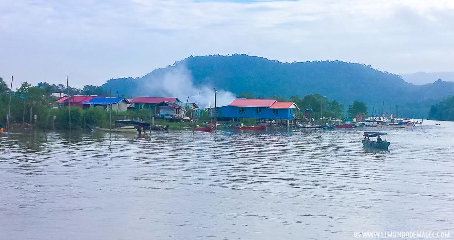 Parque Nacional de Bako - Río Sarawak
