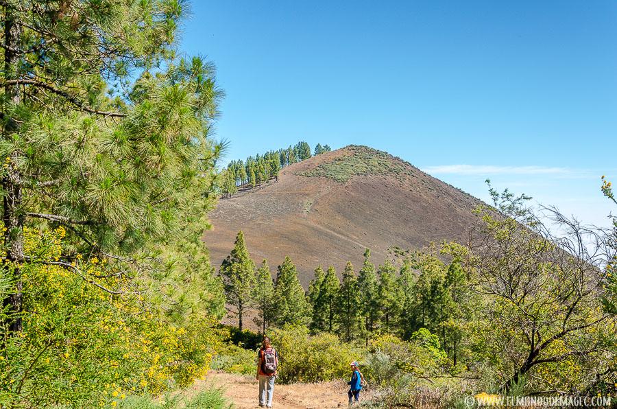 Ruta de Senderismo del Montañón Negro - Llegando al Montañón