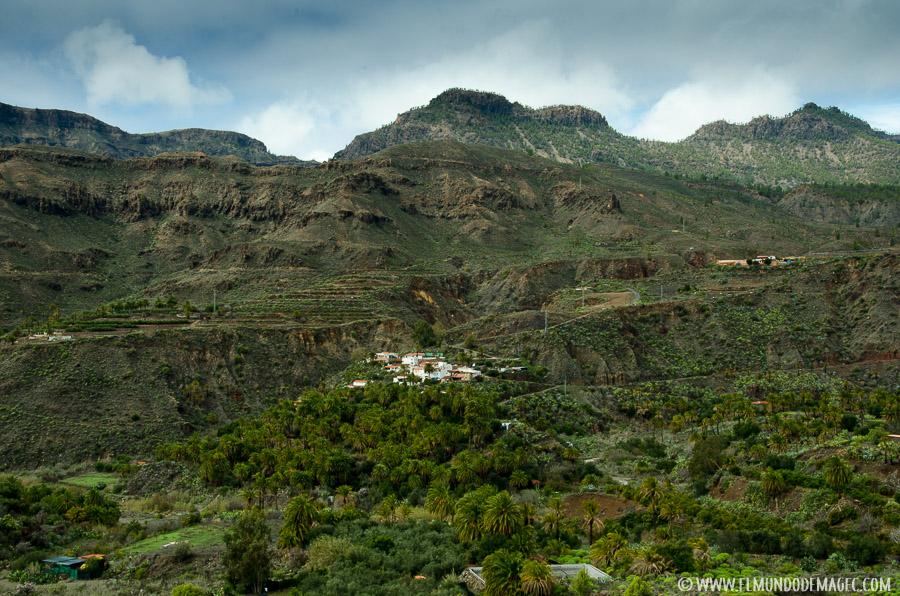 Senderismo en Gran Canaria - Palmerales de Santa Lucía