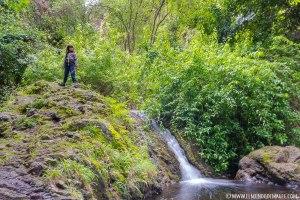 Pequeñas cascadas del barranco de Azuaje