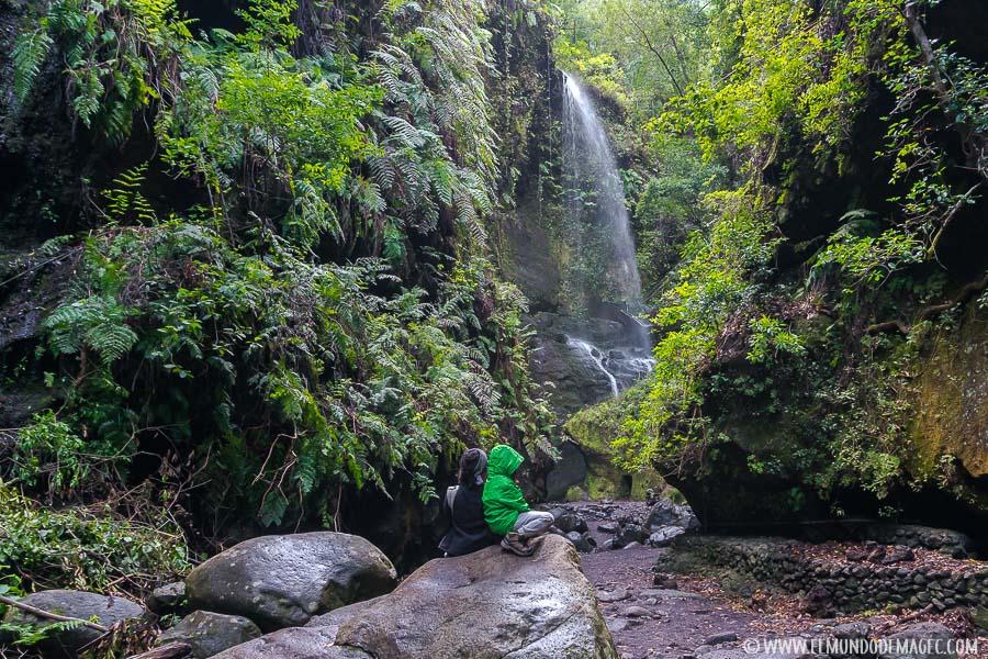 Senderismo en La Palma con niños - Los Tilos