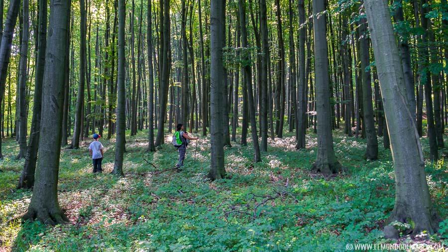 Senderismo en Hungría - Montañas de Matra