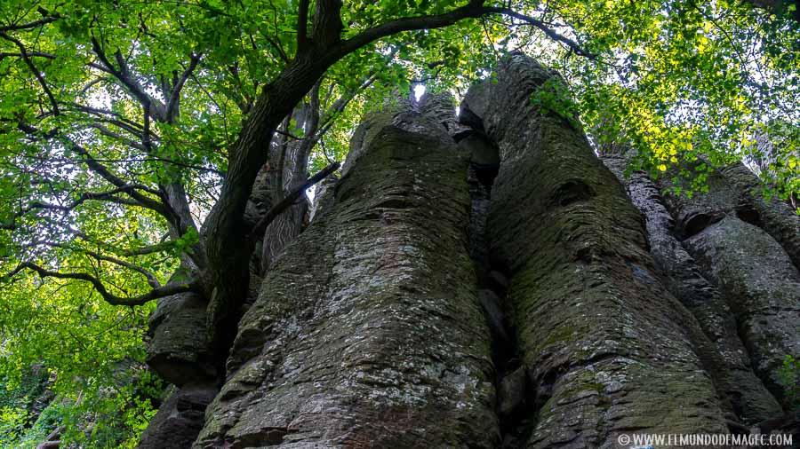 senderismo en Hungría - Organo de basalto