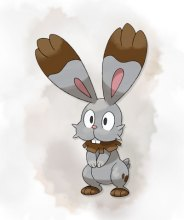 PokemonXY_Bunnelby_001