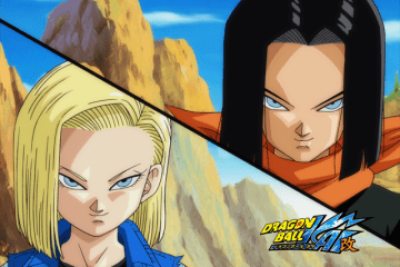 Android 17 & Android 18