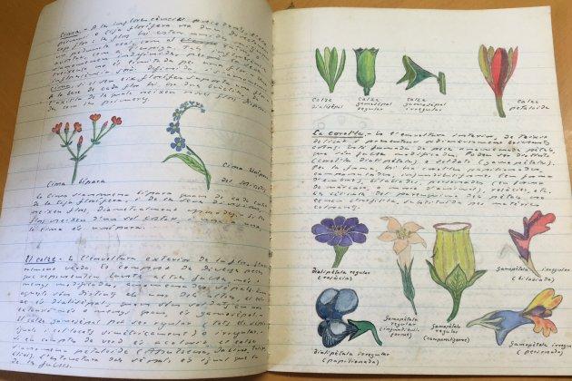 Quadern de Botanica Joan Sales