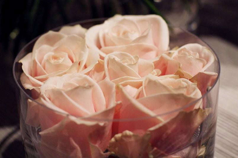 roses fleurs