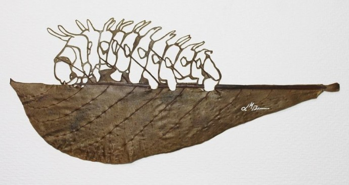 141216 01 leaf an intricate masterpiece 690x366 Tombent les feuilles