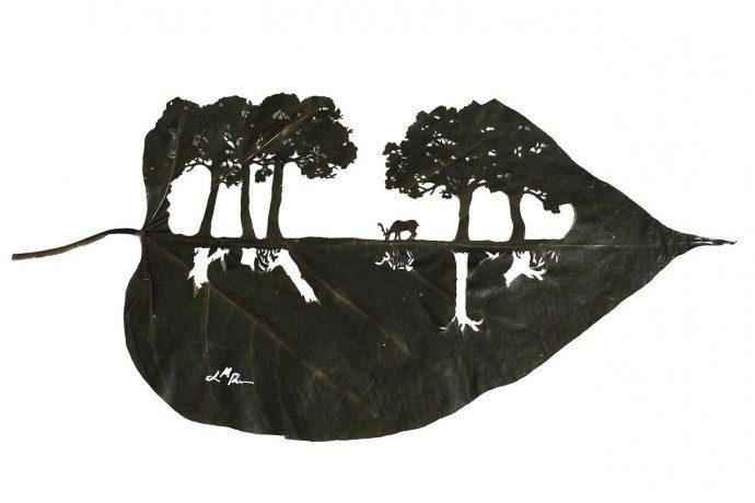 141216 reflejo 42 cm x 19 cm species catalpa bignonioides 690x460 Tombent les feuilles