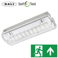Non Maintained Emergency Lighting Wiring Diagram Venn Of 24 Axiom Ip65 Led Bulkhead Exit Sign Products Ltd Dali Self Test