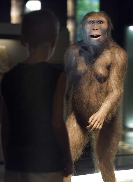 https://i0.wp.com/www.elpais.com/recorte/20070725elpepifut_1/LCO340/Ies/Reproducccion_hominido_i_Lucy_i.jpg