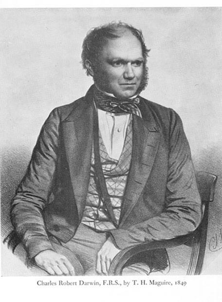 Charles Darwin en la red - Exceso de trabajo