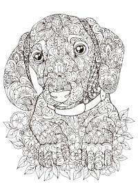 Mandalas Para Colorear De Perros Mandalas De Perros Para Colorear