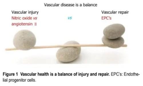 Vascular Disease Balance