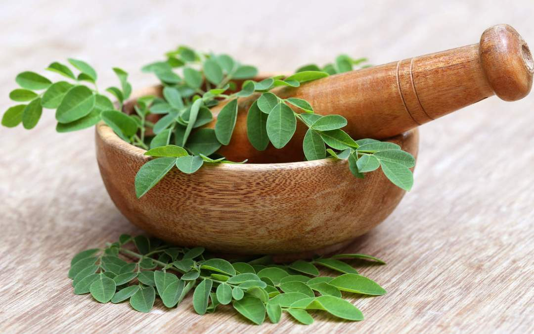 Moringa- Prevent Cancer, Diabetes, Cure Ashma, Boost Energy & Potent Natural Antibiotic