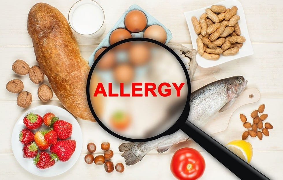 Why Intestinal Permeability Can Cause Food Allergies