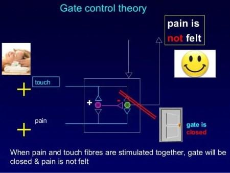 Gate Control Theory Diagram 3 | El Paso, TX Chiropractor