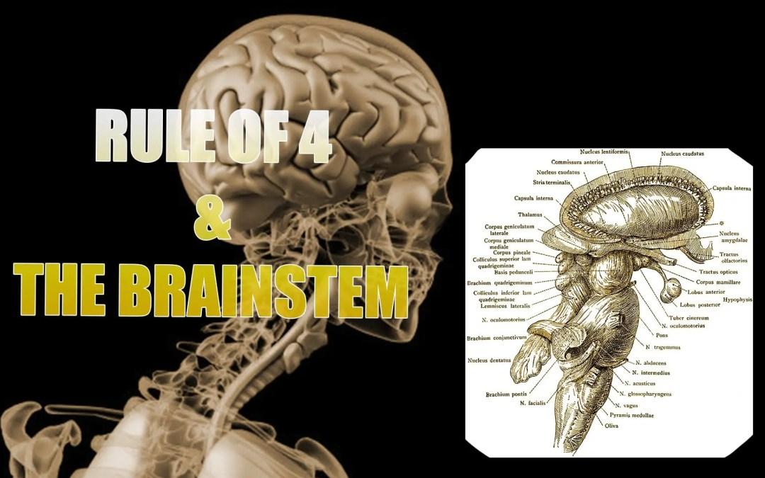 Brainstem ഉം 4 ന്റെ ഭരണം | എൽ പാസോ, TX.