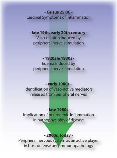 Figure 3 Timeline of Advances in Neurogenic Inflammation | El Paso, TX Chiropractor
