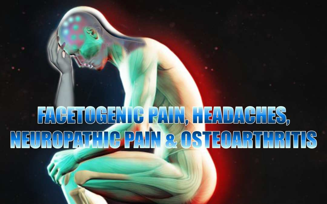 Facetogenic Pain, Headaches, Neuropathic Pain And Osteoarthritis