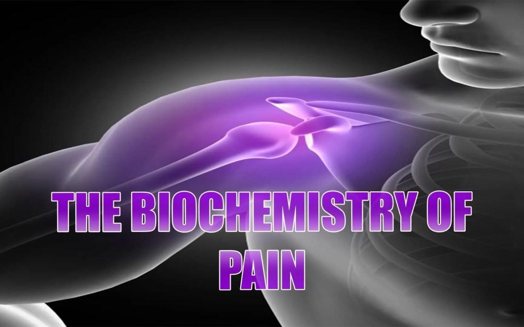 Biochimica del dolore