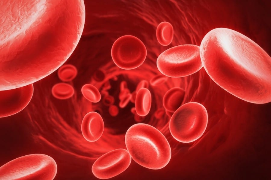 Maintaining Healthy Blood Sugar Levels