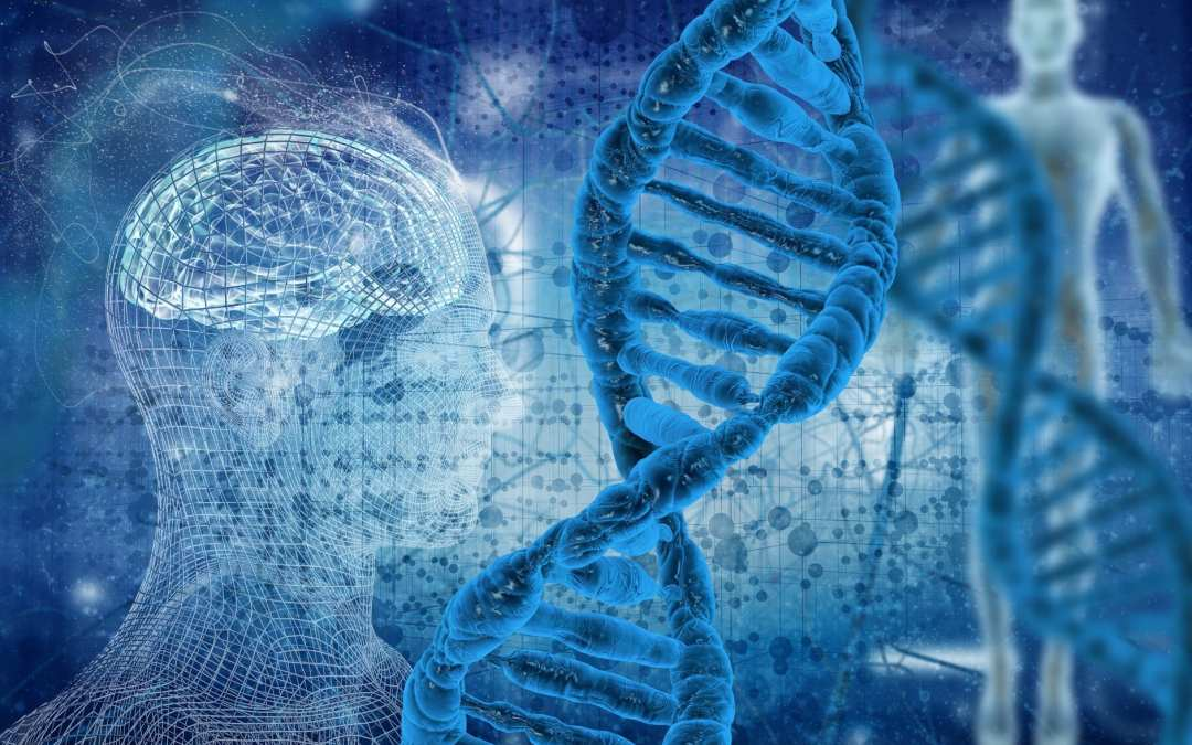 Methylation Donors for Methylation Support