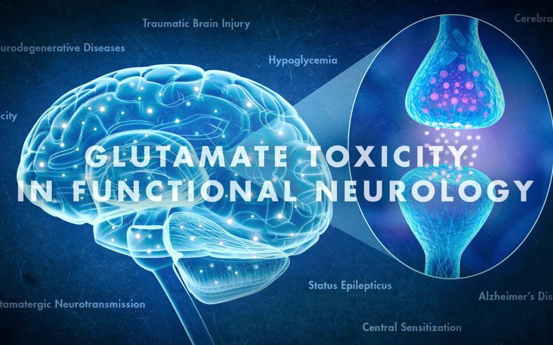 Glutamate Toxicity in Functional Neurology