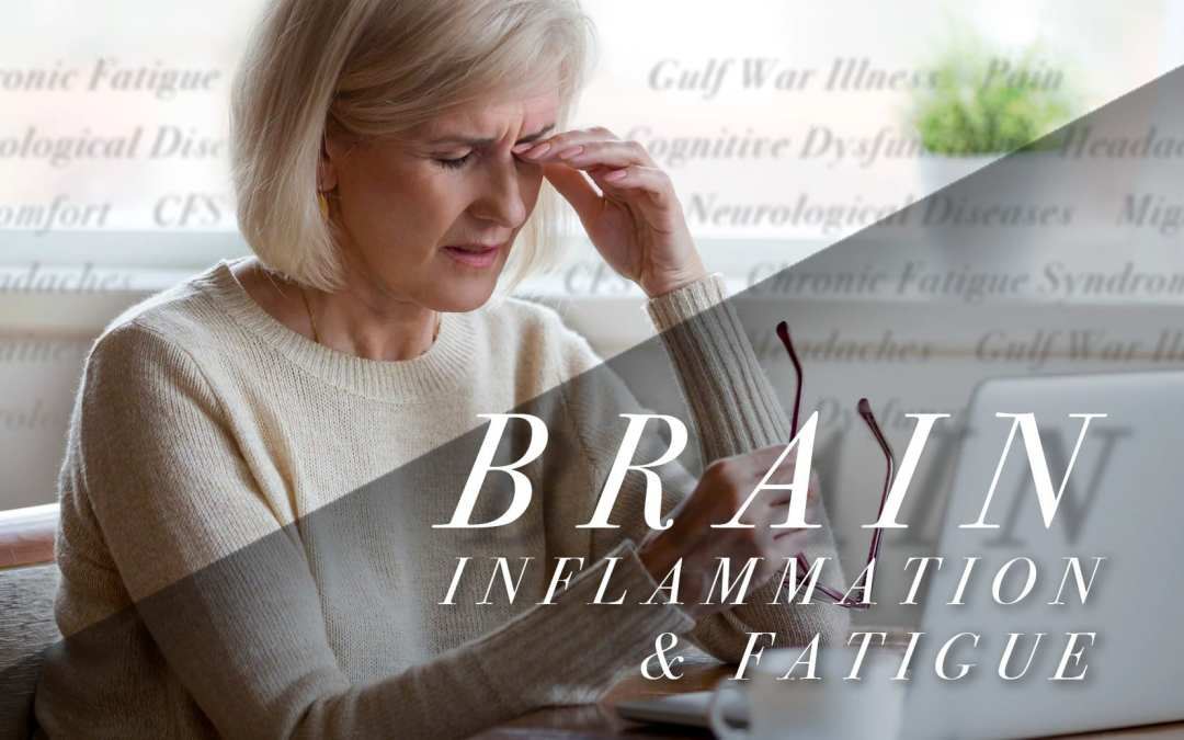 Brain Inflammation and Fatigue in Functional Neurology
