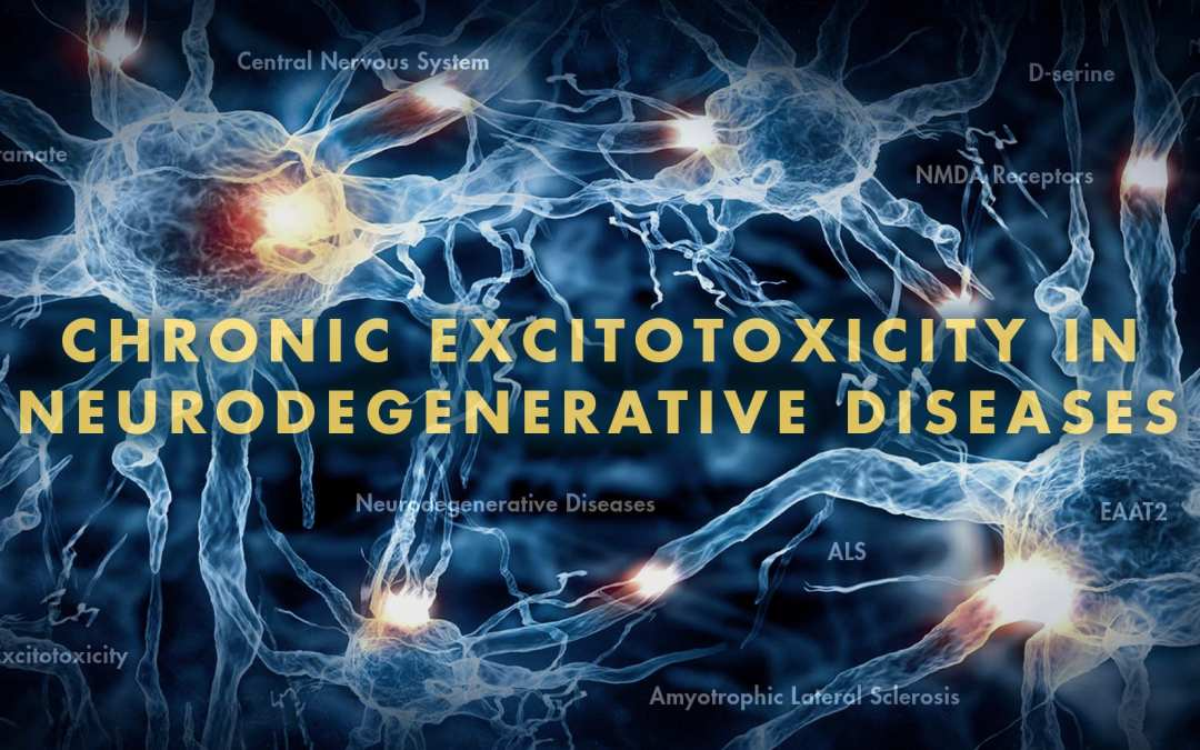 Functional Neurology: Chronic Excitotoxicity in Neurodegenerative Diseases Part 2