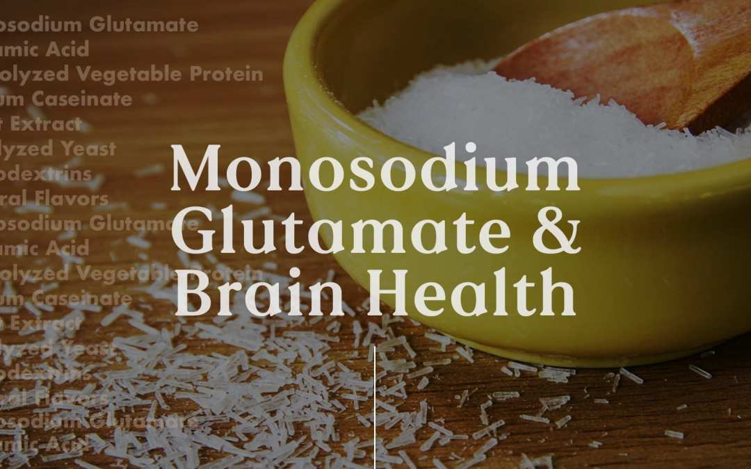Functional Neurology: Monosodium Glutamate and Brain Health